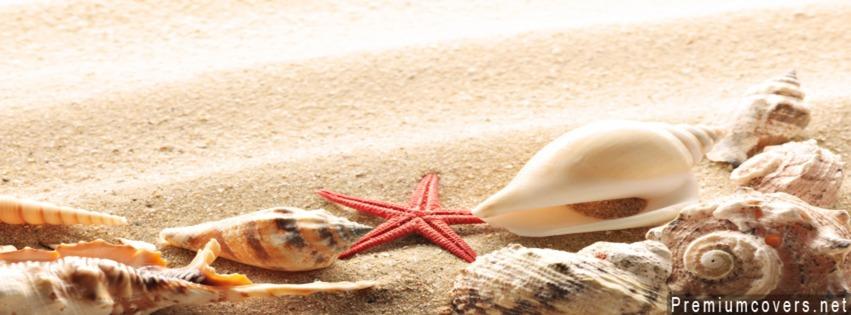 Bộ Sưu Tập Ảnh Bìa Facebook Về Biển Cực Chất